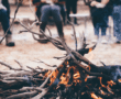 Fire burning for Indigenous ceremony