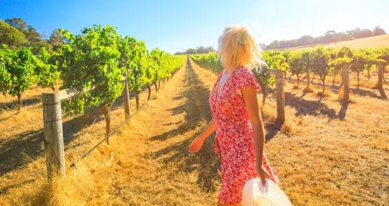 Tourists flock to Margaret River in a record-breaking season